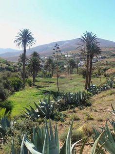 Betancuria, Fuerteventura, Islas Canarias, Spain.