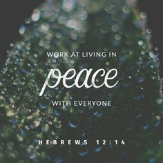 Work at living in peace with everyone, and work at living a holy life, for those who are not holy will not see the Lord. Hebrews 12:14 NLT http://bible.com/116/heb.12.14.NLT