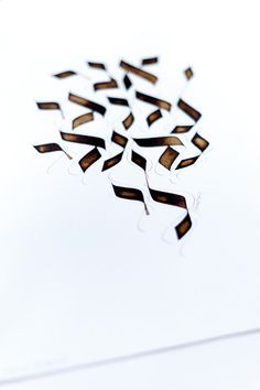 "Ani lédodi védodi li - OR by michel D'anastasio hebrew calligrapher (from <a href=""http://www.script-sign.com/galerie/picture.php?/503/category/calligraphie_hebraique_sur_papier"">Galerie de calligraphies hébraïques / hebrew calligraphy gallery</a>)"