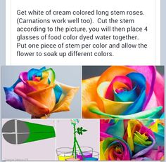 How to make a multi color flower