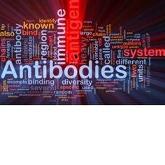 36 Immune Benefits of Probiotics