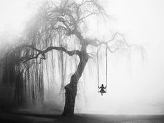 tree, alone, and swing Bild