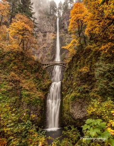~Multnomah Falls Autumn Green~ by Mitch Schreiber on 500px