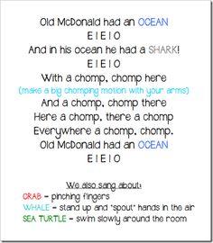 Ocean theme vocab