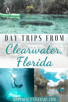 Best Day Trips from Clearwater Beach, Florida! Did you know that this beach was rated beach in the Florida Keys, Florida Vacation, Florida Travel, Vacation Spots, Travel Usa, Florida Trips, Vacation Trips, Vacation Ideas, Travel Tips