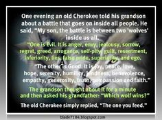 Cherokee Indian Quotes The Wolf You Feed  Cherokee Native Americans And Wisdom