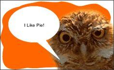 Create an animated Owl