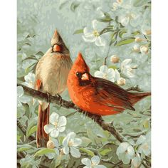 """Paint By Number Kit 16""""X20""""-Cardinals & Cherry Blossoms - Overstock™ Shopping - The Best Prices on Plaid Paint by Number"""