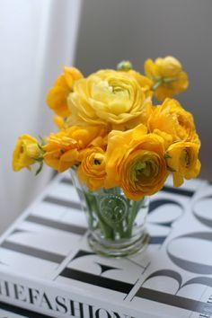 Office Yellow Ranunculus