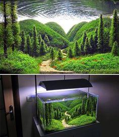 Terrarium Concept<<<< excuse me, that's an ~aquarium~ Planted Aquarium, Aquarium Terrarium, Aquarium Fish Tank, Aquarium Aquascape, Fish Tank Decor, Fish Tank Terrarium, Aquarium Landscape, Nature Aquarium, Aquascaping