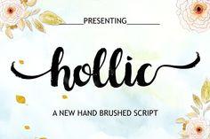 Hollic Brush (June 60% OFF) - Script
