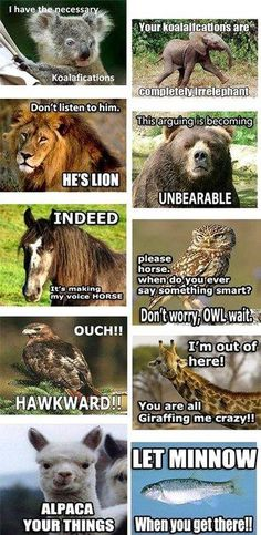 Animals say the darnest things #humor #lol