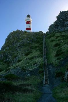 stairs to lighthouse, new zealand