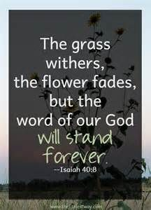 god's word - - Yahoo Image Search Results