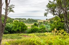 Ezemvelo Nature Reserve Nature Reserve, South Africa, Vineyard, Country Roads, Outdoors, River, Outdoor, Vineyard Vines, Nature