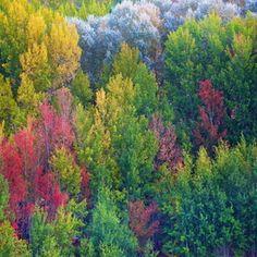 Colors Albarracin