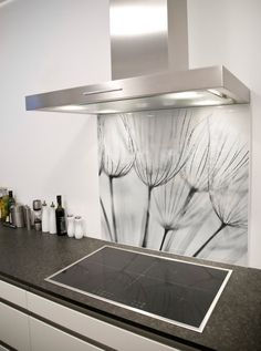 Dandelion Wish Printed Glass Splashback from DIYSplashbacks.co.uk