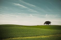 Wisconsin Hill  - I LOVE Wisconsin