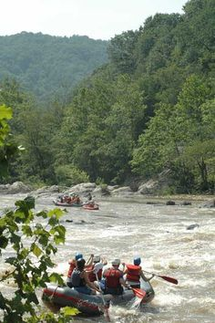 whitewater rafting on French Broad River
