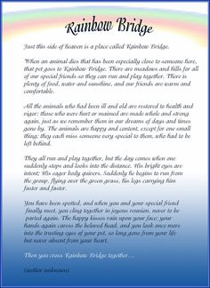 Beautiful poem for our beloved pet angels.