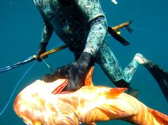 Youngbloods Spearfishing - Bring Me A Blue Horizon