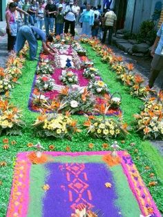 An experience that everyone should have at least once!!....Antigua, Guatemala  Easter Celebration. They cover cobblestone streets with carpet made of flowers, spices and seeds. Extraordinary and beautiful