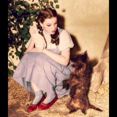 Judy/Dorothy and Toto/Terry behind the scenes in The Wizard of Oz. 1939