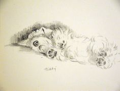"""Lucy Dawson print of """"Biddy"""" the Sealy, from 1946 book matted print."""