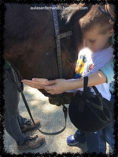 Terapia con caballos, niños con TEA. Aula Específica TEA