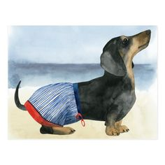 Pablo Picasso, Artist Canvas, Canvas Art, Watercolor Print, Postcard Size, Pets, Hot Dogs, Dogs And Puppies, Trunks