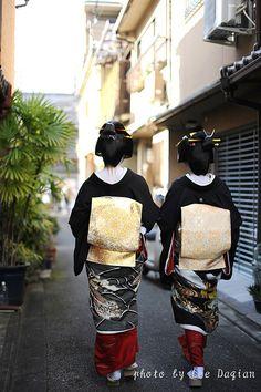 Kikuyu and Kikutsuru from the back