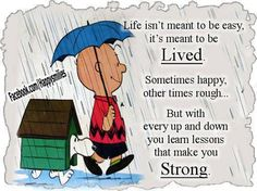 Sometimes the wisdom of Charlie Brown can be as profound as the cartoon is funny! http://bcnuts.com