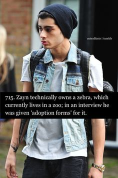 Zayn!!! <<< This is happening! I am going to do this with a hippopotamus! It's freaking decided !!!1