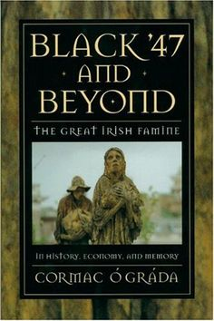 Black '47 and Beyond: The Great Irish Famine in History, Economy, and Memory (The Princeton Economic History of the Western World) by Cormac Ó Gráda http://www.amazon.co.uk/dp/0691015503/ref=cm_sw_r_pi_dp_Wt9mwb19DBEJG