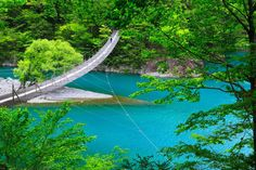 流れが複雑に入り組んだ寸又渓谷を彩る紅葉がダイナミック。他にも、温泉や「夢の吊り橋」といった名所がある。大間ダムによって作り上げられたエメラルドグリーンの湖面が足元に広がる吊り橋は、待ち行列ができるほど。