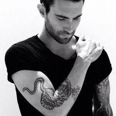 Adam Levine + tiger tattoo <333