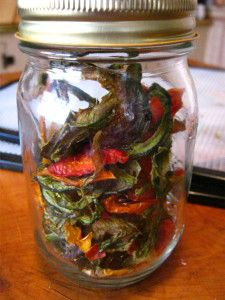 Prolong Produce: Dehydrate Bell Peppers Canning Food Preservation, Preserving Food, Dehydrating Tomatoes, Veggie Recipes, Real Food Recipes, A Food, Food And Drink, Canning Pickles, Canned Food Storage