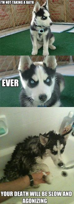 Not taking a bath... EVER! ---Hahhaahah...this is SO Billy