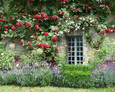 Very british garden.