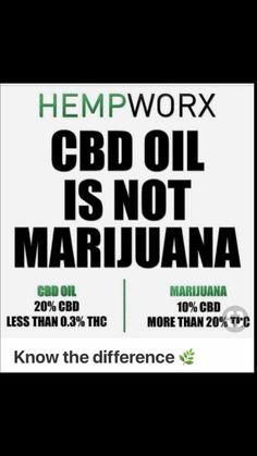 Cbd Hemp Oil, Drug Test, Cannabis Plant, Healing Herbs, Medicinal Plants, Facts, Flower Tea, Firebird, Fibromyalgia