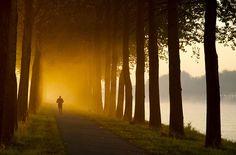 Morning Jog | Flickr – Compartilhamento de fotos!