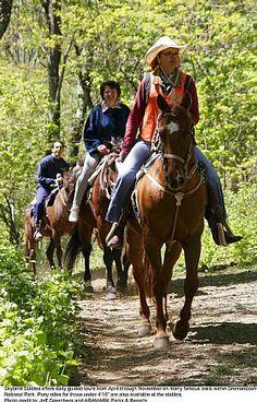Horse trails through Skyland Resort in Shenandoah National Park!