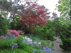 Rock Garden - Brooklyn Botanic Garden
