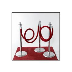 have a red carpet going into the dining room or auction room? :)