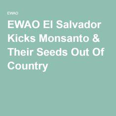 EWAO El Salvador Kicks Monsanto & Their Seeds Out Of Country