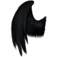 Black Angel Wings SPN ❤ liked on Polyvore featuring wings, backgrounds, accessories, colored fillers and costume