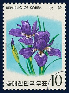 Postage Stamps of flower Series, an iris, a blue flag, Flower, purple, blue, green, 1975 07 15, 화초 시리즈(제3집), 1975년 07월 15일, 961, 붓꽃, postage 우표