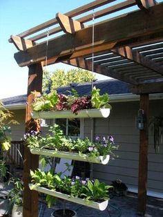 Rain gutters for potted plants. Saves ground space. Brilliant.