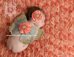 Newborn Butterfly Wings Sweet Coral Breeze Wings And Headband Set From The Sweet Fairy Fancy Collection Beautiful Newborn Photo Prop. $28.00, via Etsy.