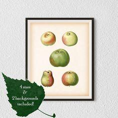 Kitchen printable art Art printables Print by RestoredBotanicalArt